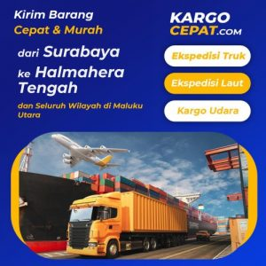 Read more about the article Ekspedisi Surabaya Halmahera Tengah