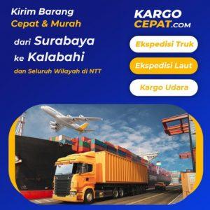 Read more about the article Ekspedisi Surabaya Kalabahi