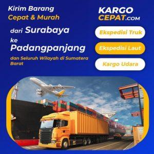 Read more about the article Ekspedisi Surabaya Padangpanjang