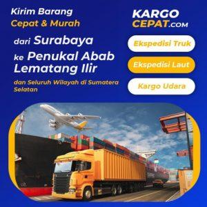Read more about the article Ekspedisi Surabaya Penukal Abab Lematang Ilir