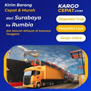 Read more about the article Ekspedisi Surabaya Rumbia